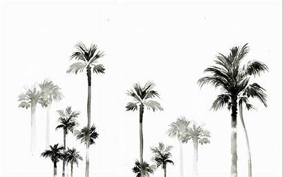 Palm Trees Desktop Wallpapers Aesthetic Tree Background