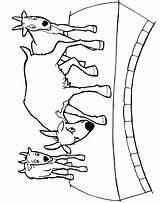Billy Gruff Goats Coloring Goat Three Fairy Bridge Colour Clipart Tale Colouring Activities Templates Crafts Printactivities Pigs Cliparts Fairytale Bruse sketch template
