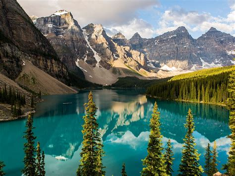 mountain lake banff canada mountains trees evergreen mural wall jasper parkway icefields majestic alberta moraine rugged forests national park reflections