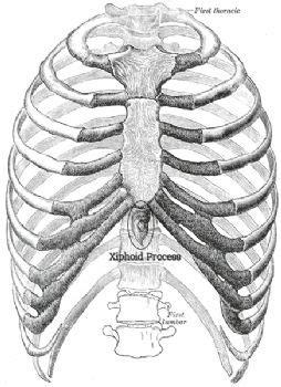 NOT a hernia