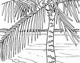 Coloring Boardwalk Beach Sunrise Palm Pages Adult Ocean Themed Tree Embroidery Pattern Scene 270px 48kb sketch template
