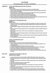 Supply Network Specialist Resume Samples