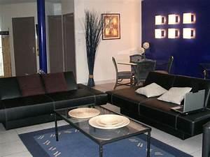 bleu attu salon idees novatrices de la conception et du With association de couleurs avec le gris 16 1001 idees pour une chambre bleu canard petrole et paon