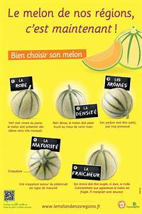 Comment Choisir Un Four : comment bien choisir un melon sipmm melon ~ Melissatoandfro.com Idées de Décoration
