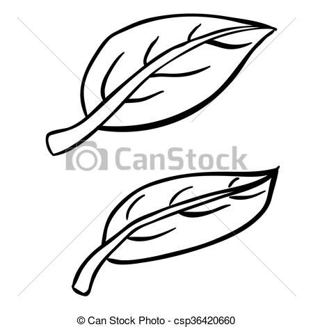 Simple black and white freehand drawn cartoon leaves