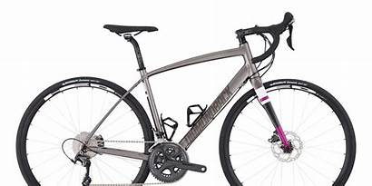 Diamondback Bikes Bicycling Gear Crop Brand