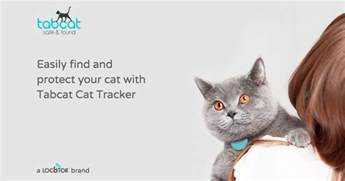 cat tracker tabcat cat tracker uk keep your cat safe