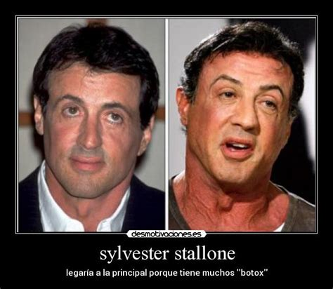 Stallone Meme - sylvester stallone young memes