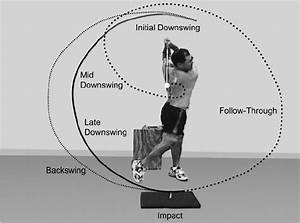 The Primary Phases Of The Golf Swing As Determined By