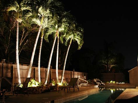 light up palm tree outdoor outdoor solar lights for trees home landscapings