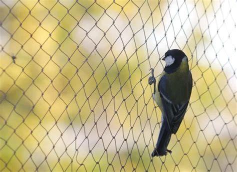 bird control netting american nettings fabric