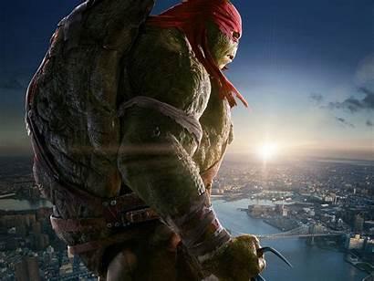 Ninja Raphael Turtles Mutant Teenage Michelangelo Tmnt