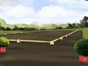 How To Set Up A Dressage Arena  13 Steps  With Pictures