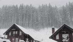 winter sounds gifs search find make gfycat gifs