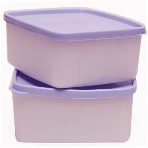 Tupperware Cool N Fresh Containers Small Set of 2