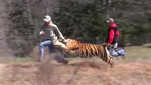 Joe Exotic - The Tiger King - YouTube