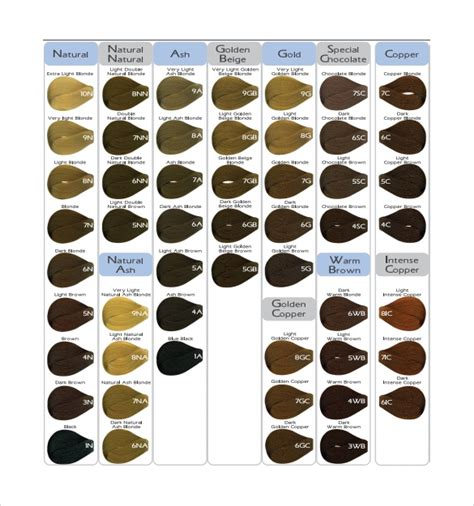 hair color chart templates  sample  format