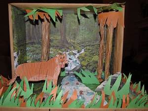 Liger diorama. Made with construction paper, cellophane ...