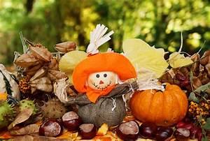 Kostenlose Bilder Herbst : vogelscheuche herbst k rbis kastanien lizenzfreie fotos bilder kostenlos herunterladen ~ Yasmunasinghe.com Haus und Dekorationen