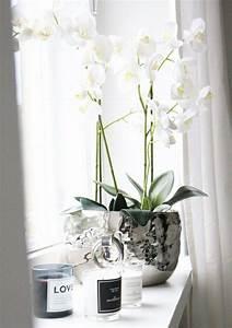Blumen Für Fensterbank : fensterbank deko stilvolle deko ideen f r die fensterbank wohnzimmer pinterest ~ Markanthonyermac.com Haus und Dekorationen