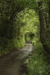 Caminhos... | The Road Less Traveled | Camino, Paisajes ...