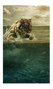 4K Ultra HD Tiger Wallpapers HD, Desktop Backgrounds 3840x2160