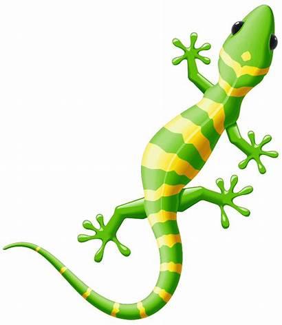 Clipart Reptile Salamandre Verte Sticker Library Fanastick