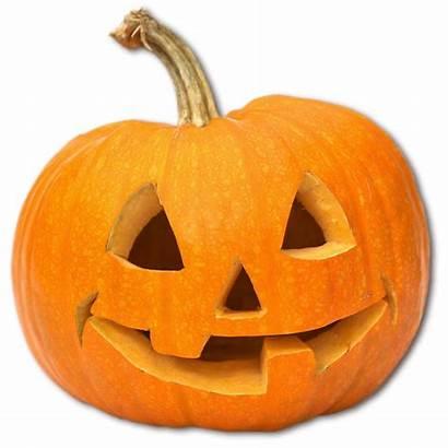 Pumpkin Carving Pumpkins Halloween Festival Carve