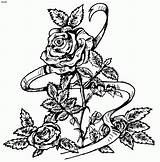 Coloring Roses Rose Pages Adults Printable Easy Colouring Skull Books Drawing Cartoon Cliparts Popular Adult Azcoloring Craft Butterfly Getcoloringpages Tattoo sketch template