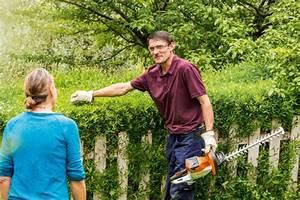 Wachstum Jungen Fördern : hecke schneiden mit zwei schnitten pro jahr das wachstum ~ Jslefanu.com Haus und Dekorationen