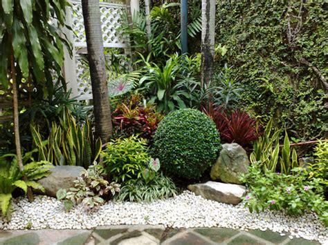 philippines landscape plants mr adam landscaping design in the philippines
