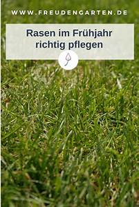 Rasen Richtig Düngen : rasen d ngen im fr hjahr pflanzen pinterest ~ Frokenaadalensverden.com Haus und Dekorationen