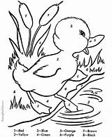Coloring Easter Pages Duck Printable Duckling Ducks Pond Colouring Sheets Spring Number Raisingourkids Worksheets Bunny Ducklings Numbers Activities Adults Printing sketch template