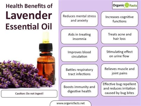 top 15 lavender essential benefits uses organic facts