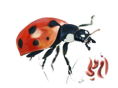 Ladybug Resume by Ladybug Resume Thesistemplate Web Fc2
