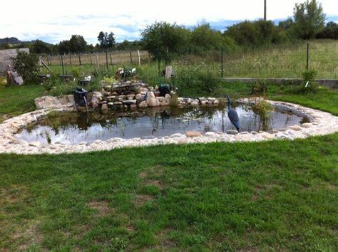 eau verte bassin exterieur bassin exterieur poisson bassin exterieur poisson sur enperdresonlapin