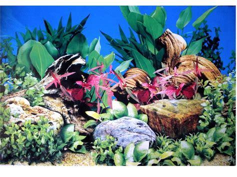 poster fond aquarium 3d