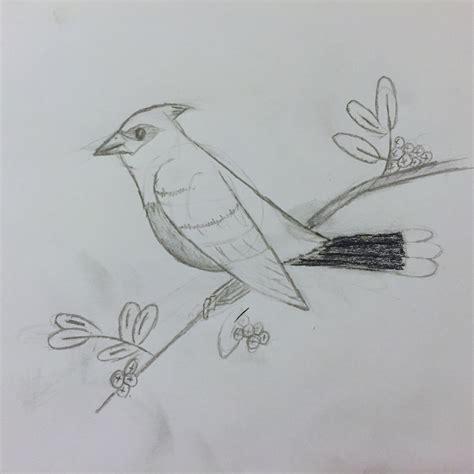 Drawing  Ash Furrow