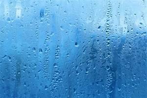 Zu Hohe Luftfeuchtigkeit : hohe luftfeuchtigkeit zu hohe luftfeuchte in der wohnung ~ Frokenaadalensverden.com Haus und Dekorationen