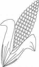 Corn Coloring Pages Preschool Stalk Barley Printable Vegetables Candy Drawing Para Pintar Sheets Print Milho Desenho Cute Molde Drawings Craft sketch template
