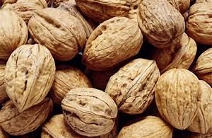 Walnuts Vs. Pecans Nutrition | LIVESTRONG.COM
