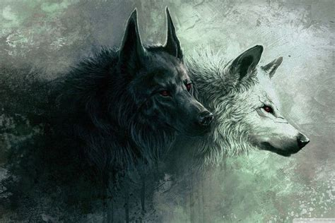 Anime Wallpaper Wolf by Anime Wolf Wallpaper 183 Wallpapertag