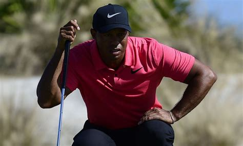 Today's Best Wonder What It Was Like To Face Tiger ...