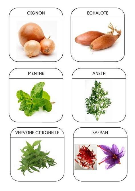 plantes aromatiques cuisine 32 best images about la soupe au caillou on