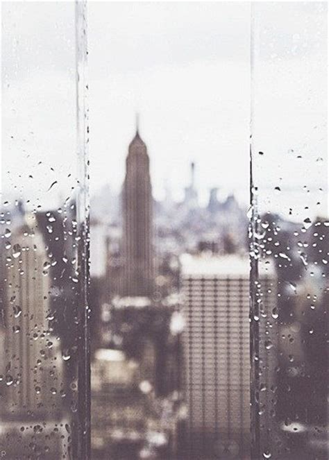 raindrops   window pictures   images