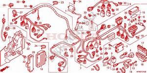 Honda Trx 420 Wiring Diagram : wire harness for honda fourtrax 420 rancher 4x4 manual ~ A.2002-acura-tl-radio.info Haus und Dekorationen