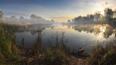 landscapes nature trees morning lakes sun rays dawning