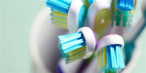 The Right Way to Store Toothbrushes   Toothbrush Storage