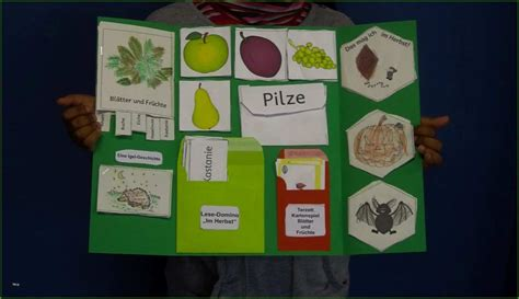 A lapbook is a useful tool to collect in a single folder materials related to a chosen topic, in an interactive and creative. Lapbook Vorlagen Wald Einzahl Kasilou Fertige Herbst ...