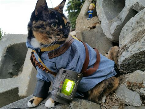 vault cat proves felines arent extinct   fallout